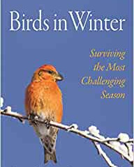 Birds in Winter by Roger F Pasquier Hard back 304pages, Princeton, £25.00
