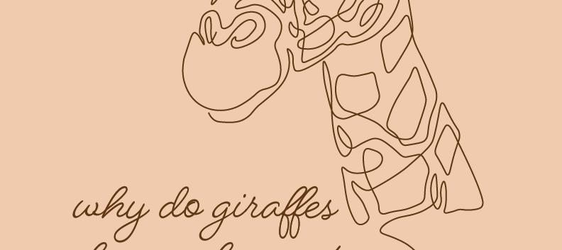 giraffenew-8 copy.png