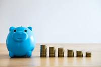 Save money blue piggy.png