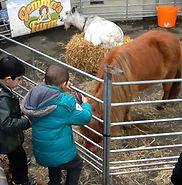 Gemmas Farm.jpg