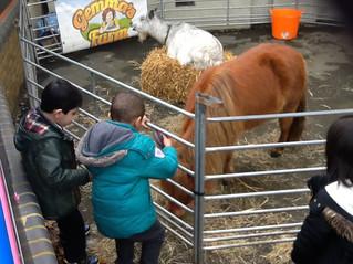 Gemma's Farm Visit