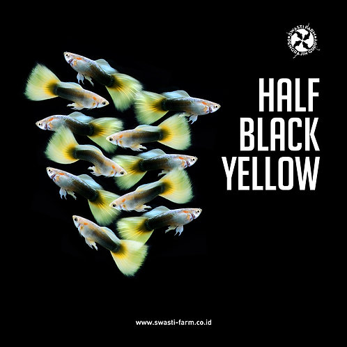 HALF BLACK YELLOW