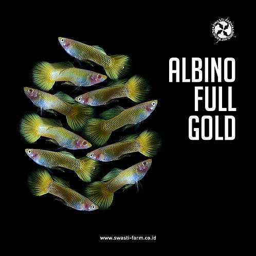 ALBINO FULL GOLD