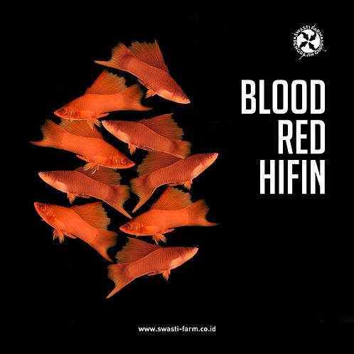 BLOOD RED HIFIN