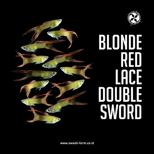 BLONDE RED LACE DOUBLE SWORD