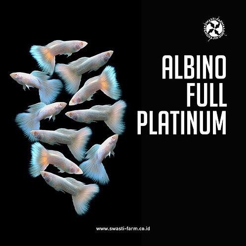 ALBINO FULL PLATINUM