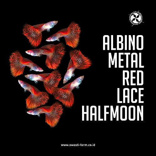 ALBINO METAL RED LACE HALF MOON