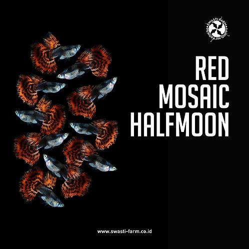 RED MOSAIC HALF MOON