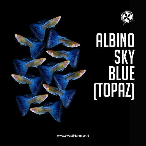 ALBINO SKY BLUE / TOPAZ