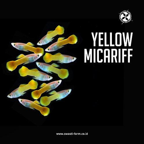 YELLOW MICARIFF