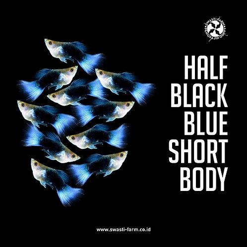 HALF BLACK BLUE SHORT BODY