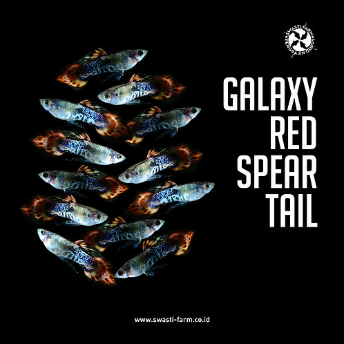 GALAXY RED SPEAR TAIL