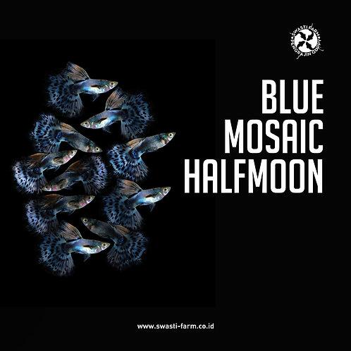 BLUE MOSAIC HALF MOON