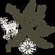 2018 N+S Logo brown.png