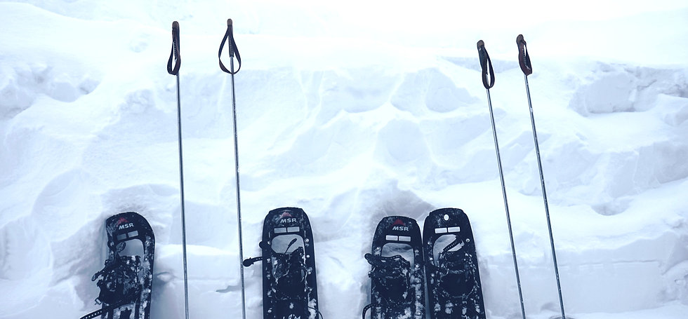 two pairs of snowshoes with poles leaning on snow_edited.jpg