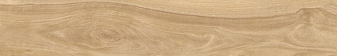 Cassia Honey Pine