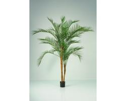 Phoenix X 3 Plastic Leaves 7ft €245