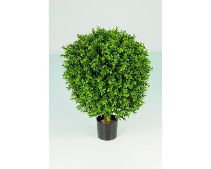 Boxwood Ball in Pot 75cm €175