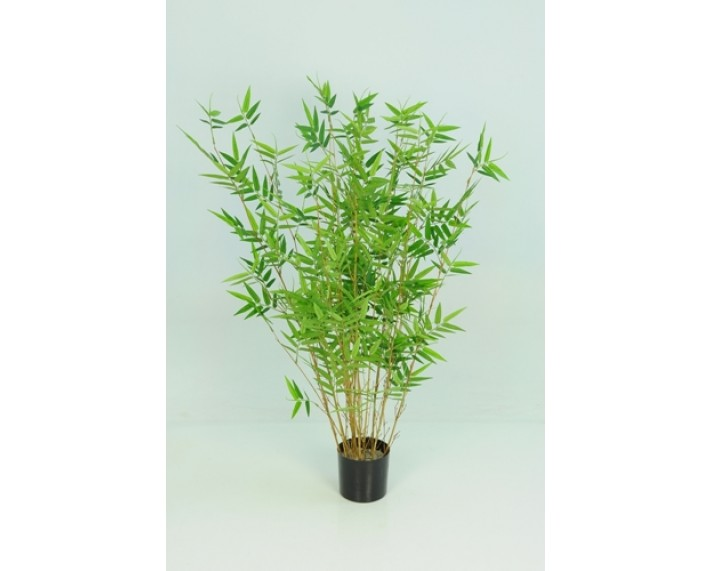 Bamboo Oriental 3ft €54