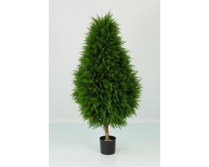 Cypress Cone 110cm €135