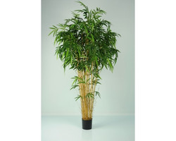 Bamboo Natural 5ft €164