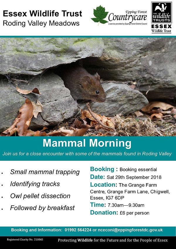 mammal.morning.essex.wildlfe.trust.jpg