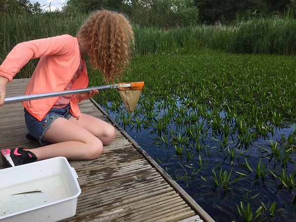 07. Pond Dipping.png