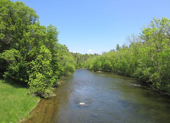 River Steward