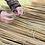 Thumbnail: Tree Tubes & Stakes