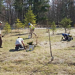 CCMI-Crew-and-Mitch-Lundeen-Planting-Tre
