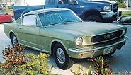 66 Mustang.jpg