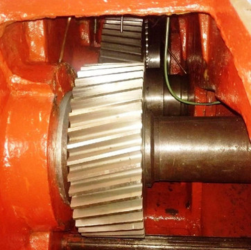 PLBP-001294-06.jpg