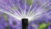 O uso inteligente da água na irrigação