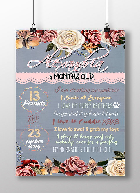 Shabby Chic monthly milestone sign
