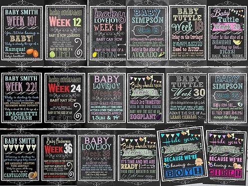 Weekly Pregnancy Progress