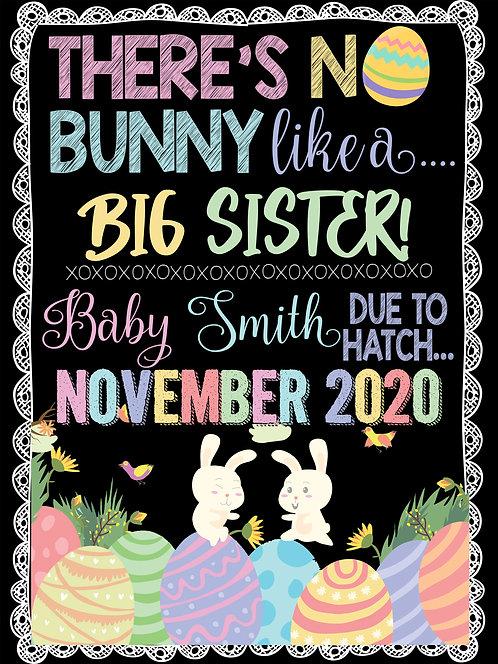 No Bunny Like A Big Sis