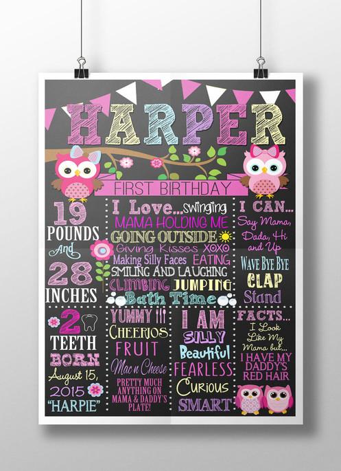 Owl 1st birthday board