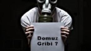 Hürriyet Gazetesi (12.10.2010) Haberi : Domuz Gribi Salgını Sahte