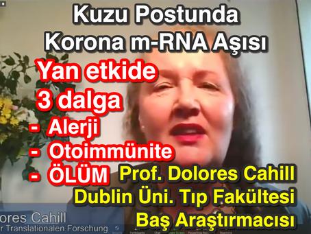 Kuzu Postunda Korona m-RNA Aşısı - Prof. Dolores Cahill