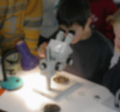 microscopes, observations, animations, expériences, ateliers, manipulations, enfants, adultes, tout public, science, culture, patrimoine, histoire, société, école, collèges, lycées, médiathèques, bibliothèques, associations