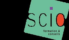 logo tercio fomation & conseils, formation coneil, intelligence culturelle, connaître et développer son territoire