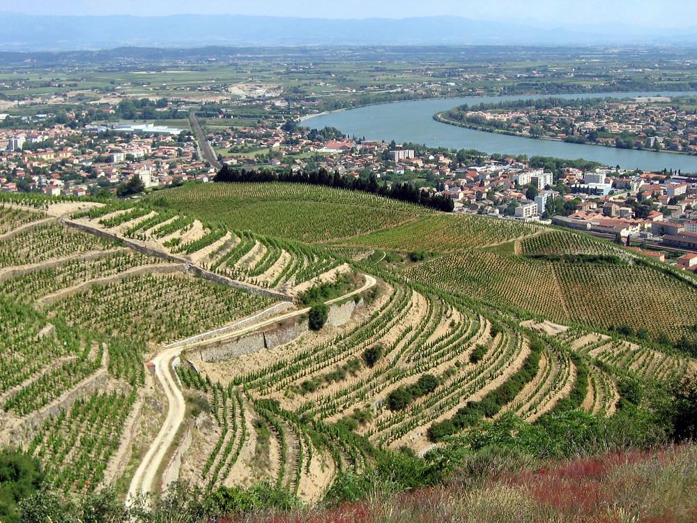 Rhône, Vercors, plaine de la bataille du confluent, Tain-l'Hermitage, vignobles