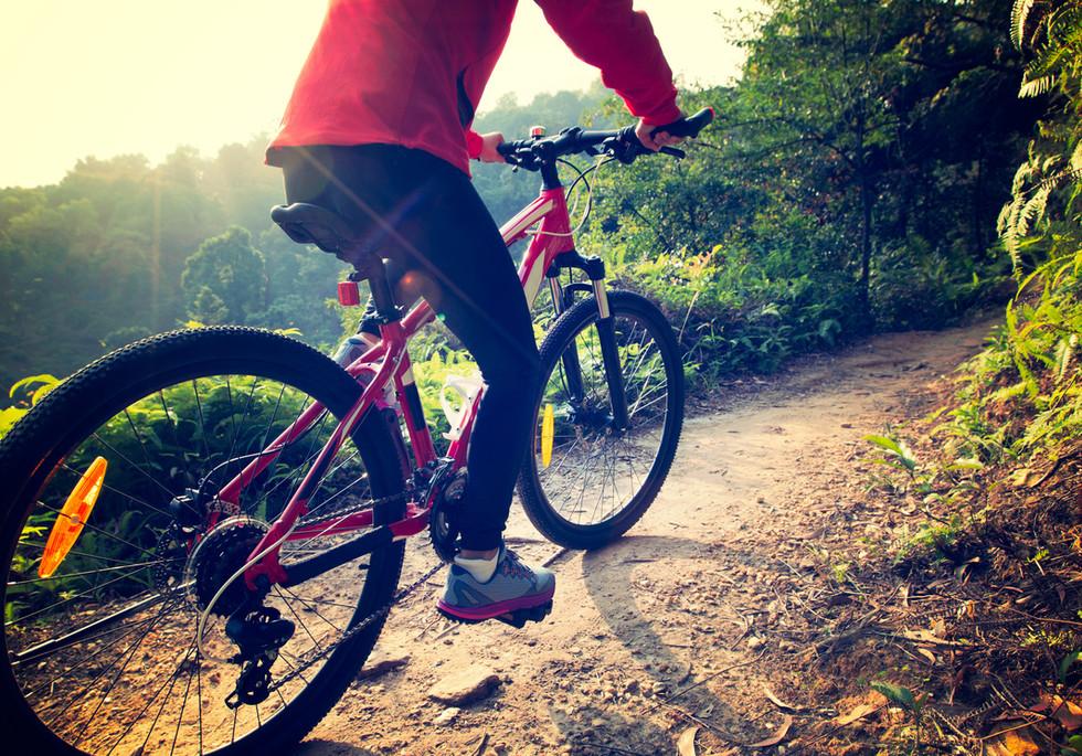 elmtree-slider-biking.jpg
