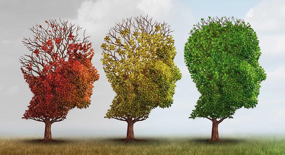 Alzheimer's Trees.jpg