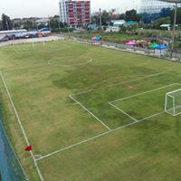 สนามฟุตบอลหญ้าจริง