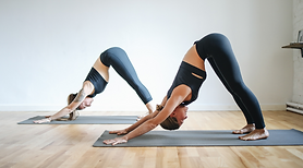 yoga-roots-marjolein-weekly-classes-hath