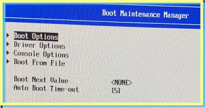 ESXi Arm UEFI Configuration Boot order