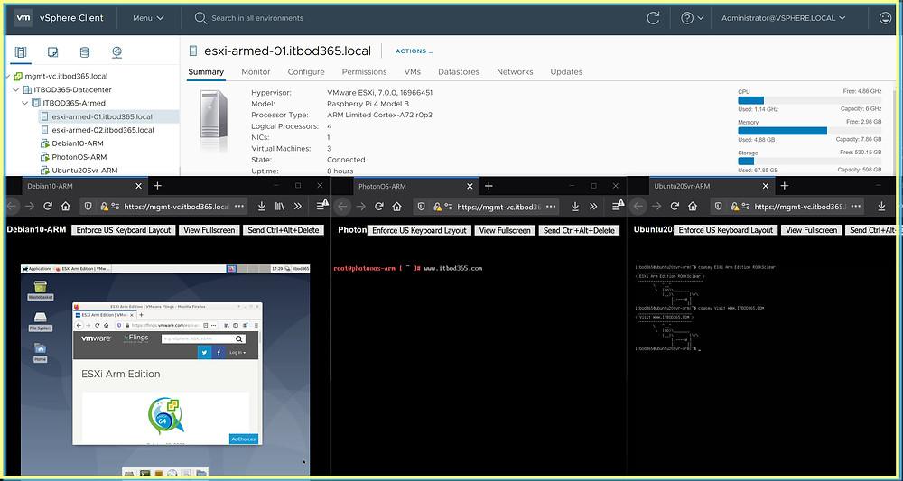 ESXi Arm running guest OS VMs