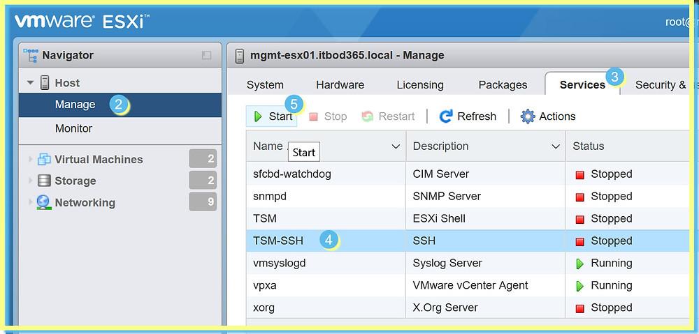ESXi vSphere Client Enable SSH