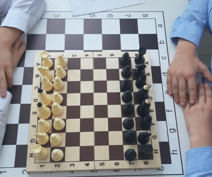 Шахматы (4).jpg